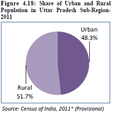 National Capital Region (India): Demographic Profile and