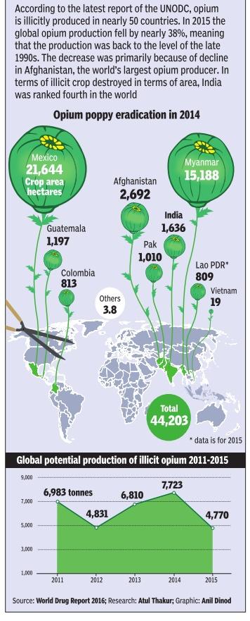 Opium poppy eradication in 2014, India and the world; Graphic courtesy ...